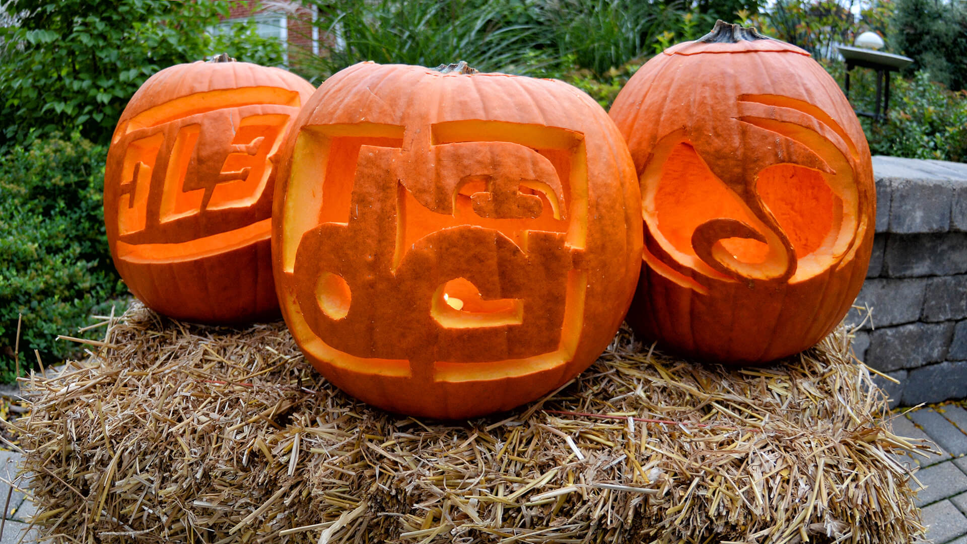 50 pumpkin templates to give your Halloween decor drum corps flair